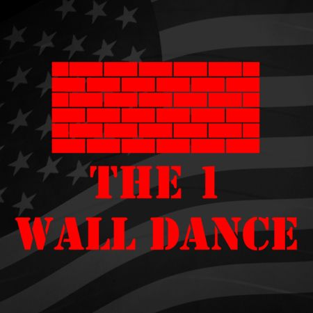 1 Wall Line Dance Iron on Decal