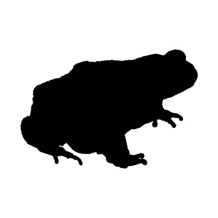 Toad Iron on Decal