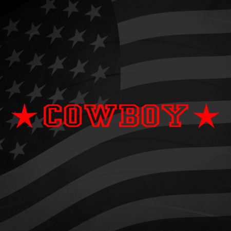 Cowboy Iron on Decal