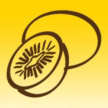 Kiwi Fruit Iron on Decal