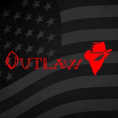 Outlaw Iron on Decal