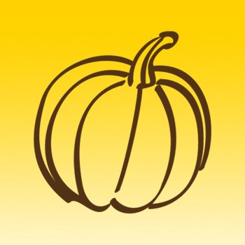 Pumpkin Fruit 2 Iron on Decal
