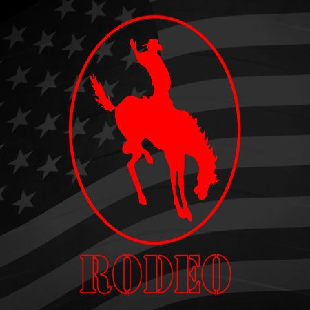 Rodeo Horse Iron on Decal